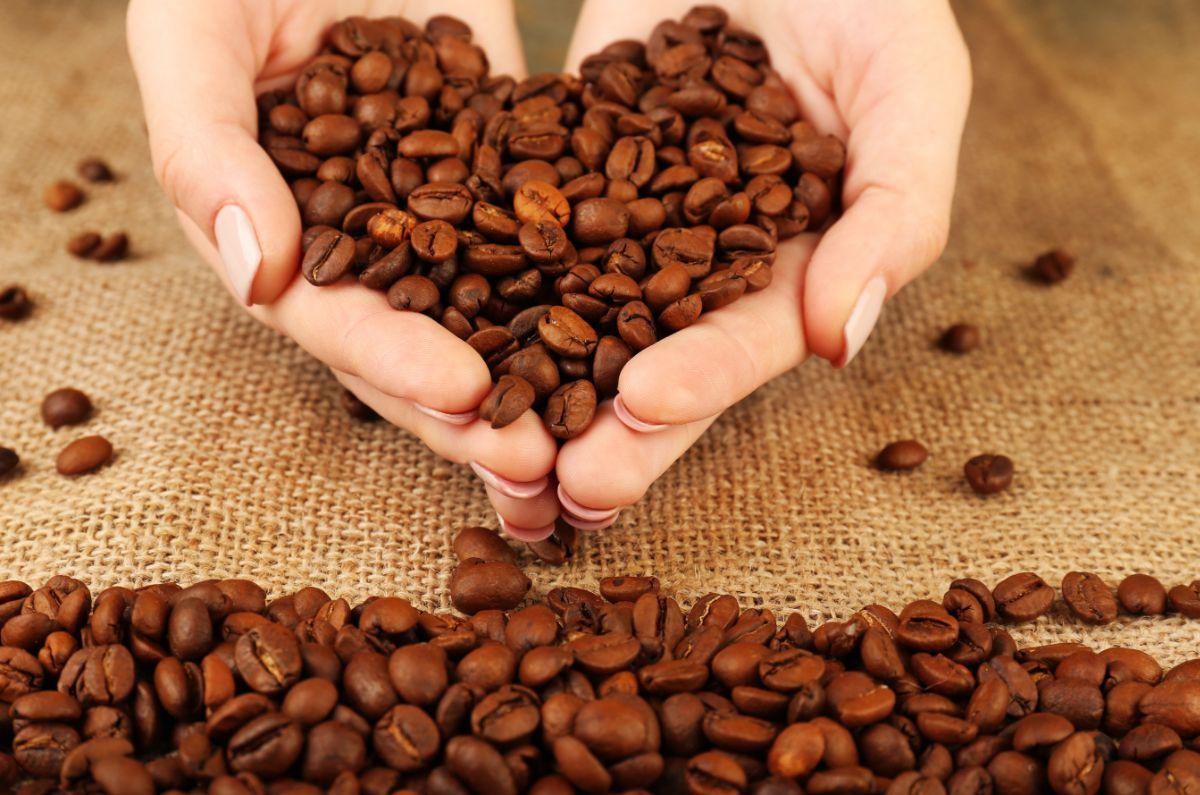 コーヒーと健康『国立がん研究センター』4