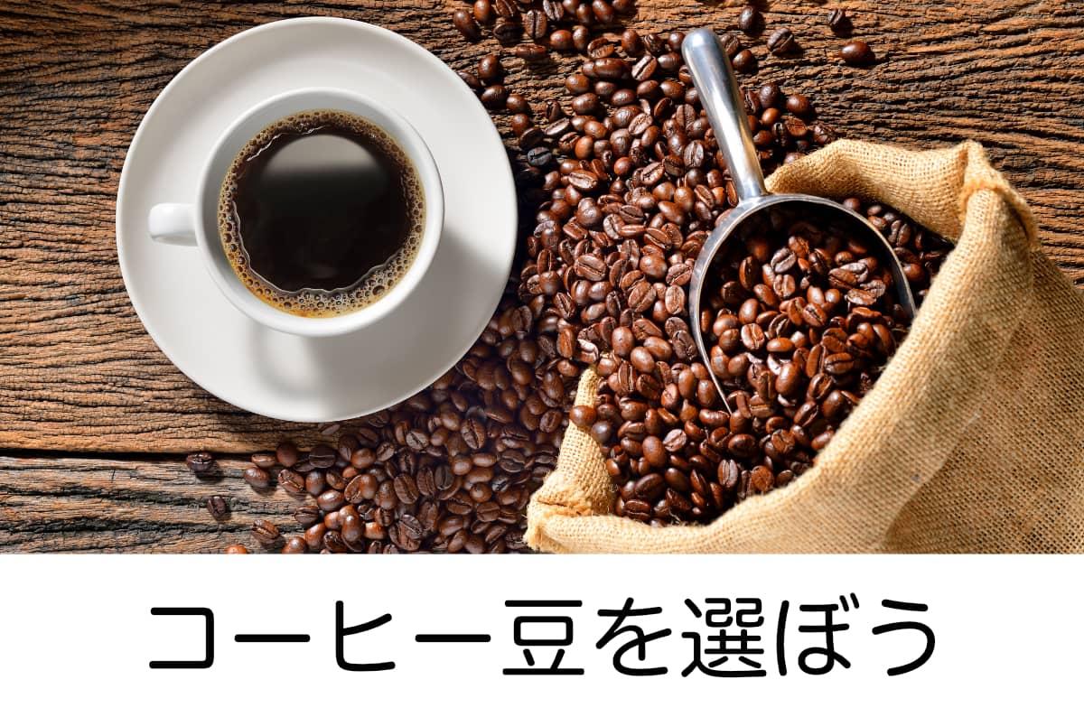 コーヒー豆を選ぶ
