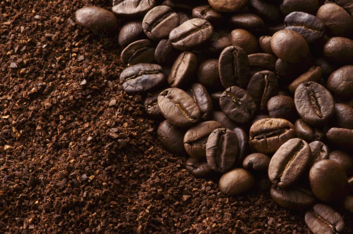 コーヒー豆の選び方 コーヒー豆かコーヒー粉か