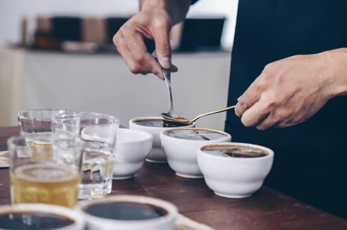 コーヒー豆の選び方 カッピング テイスティング評 チャート