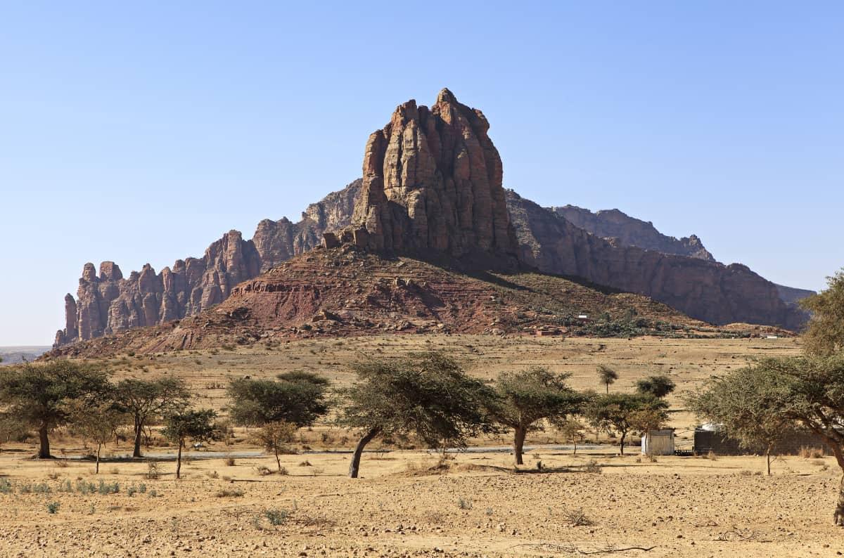 珈琲きゃろっと エチオピア グジ G1 チルフィート 中煎り エチオピア 風景
