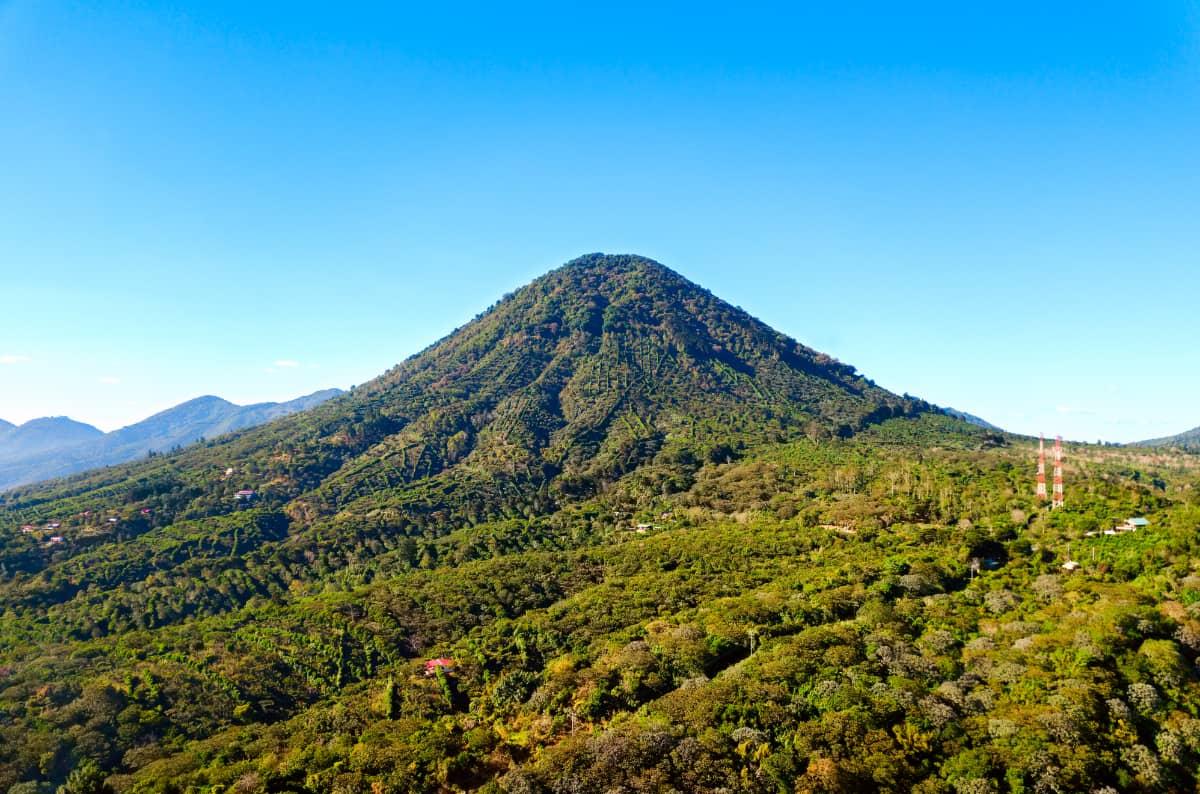 土居珈琲 エルサルバドル べジャ・ビスタ農園 コーヒー豆 フルシティロースト 火山 コーヒー農園